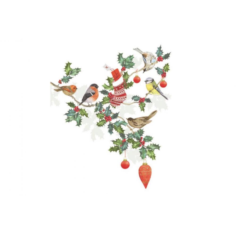 Boxed Card - Christmas - Cozy Holiday Birds