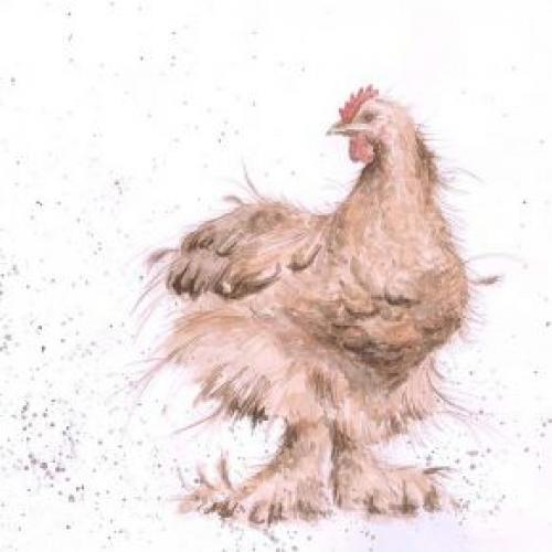 Any Occasion - Henrietta Cluck
