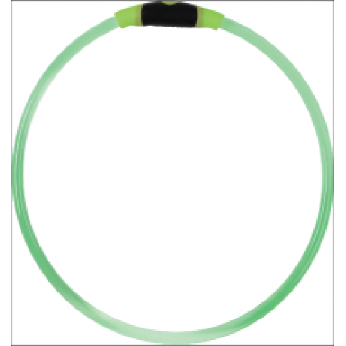 Dog Safety Necklace Green