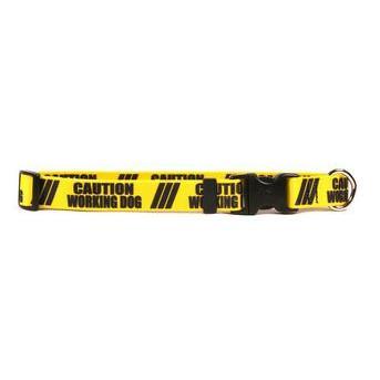 Dog Collar 1in wide Medium 14inch-20inch Caution Working Dog