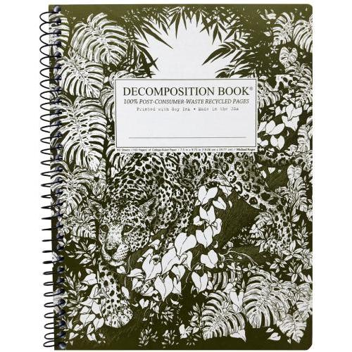 Decomposition Notebook - Spiral - Jaguar