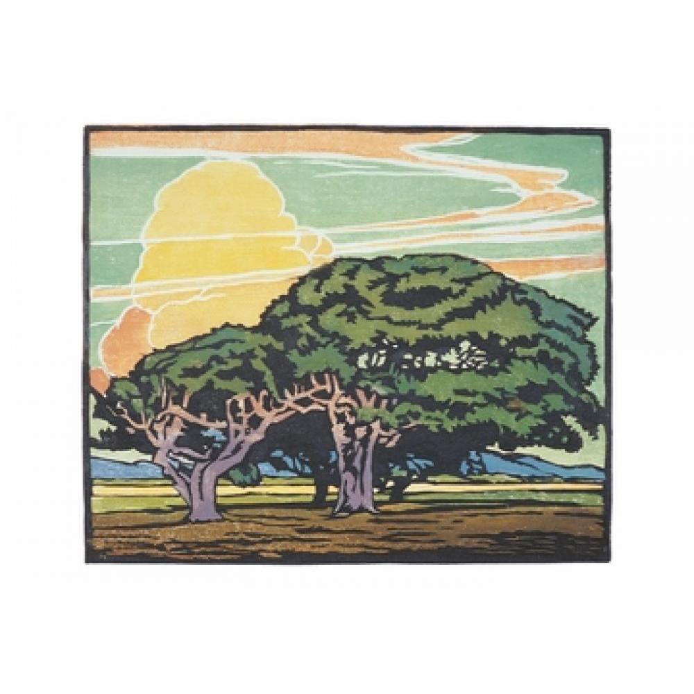 Boxed Card - William S Rice - Del Monte Oaks