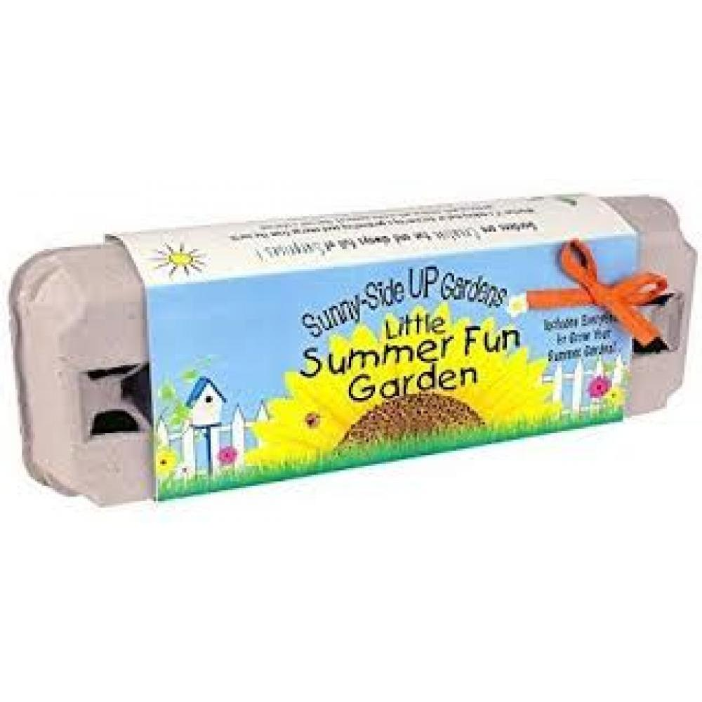 Seed Kit Grow Little Summer Fun