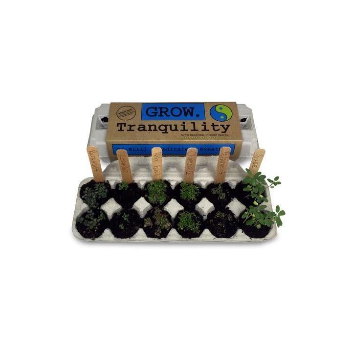 Seed Kit Grow Tranquility