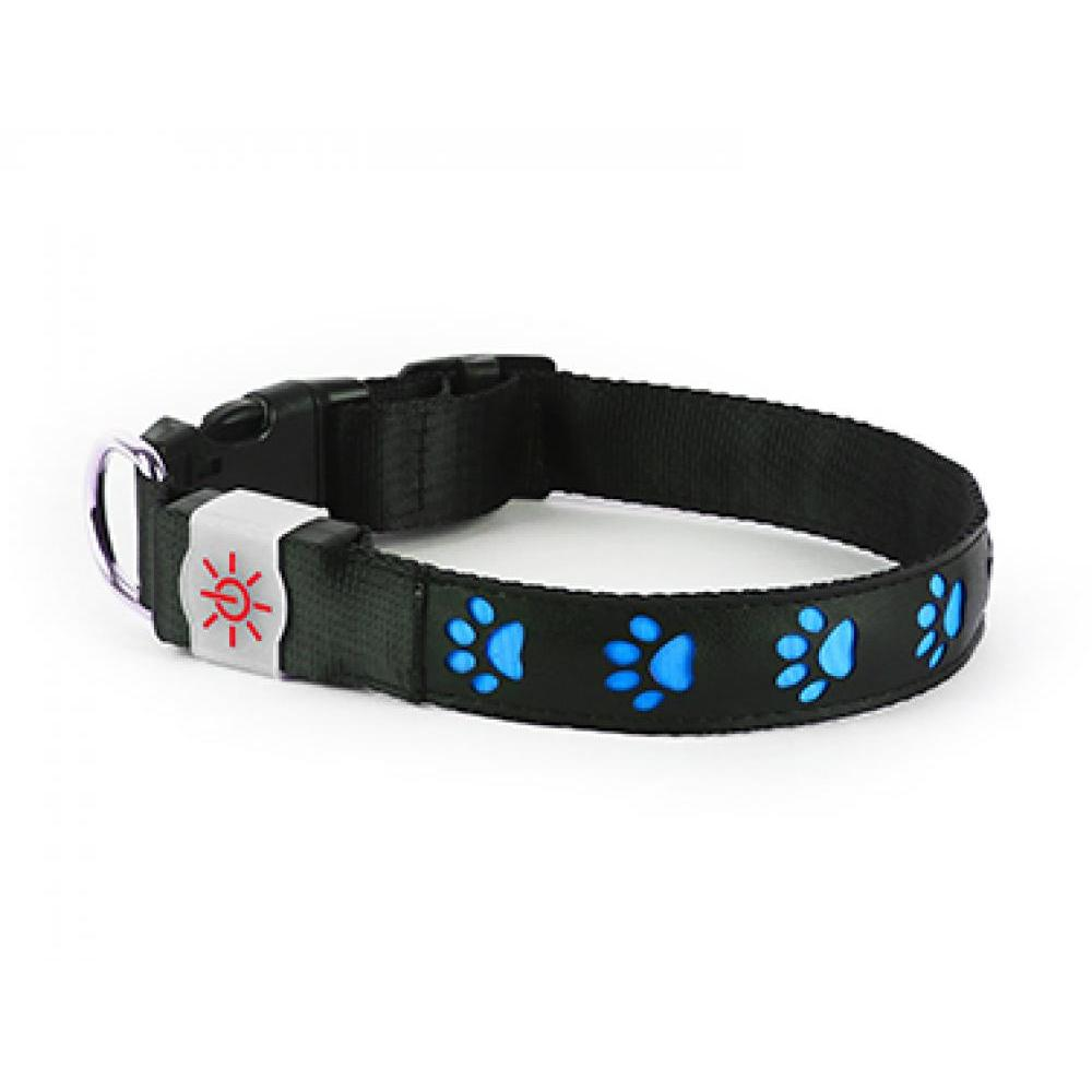 Night Scout Dog Collar