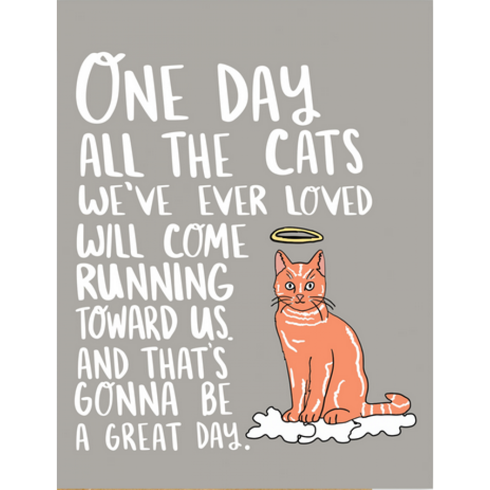 Pet SYmpathy - One Day Cat