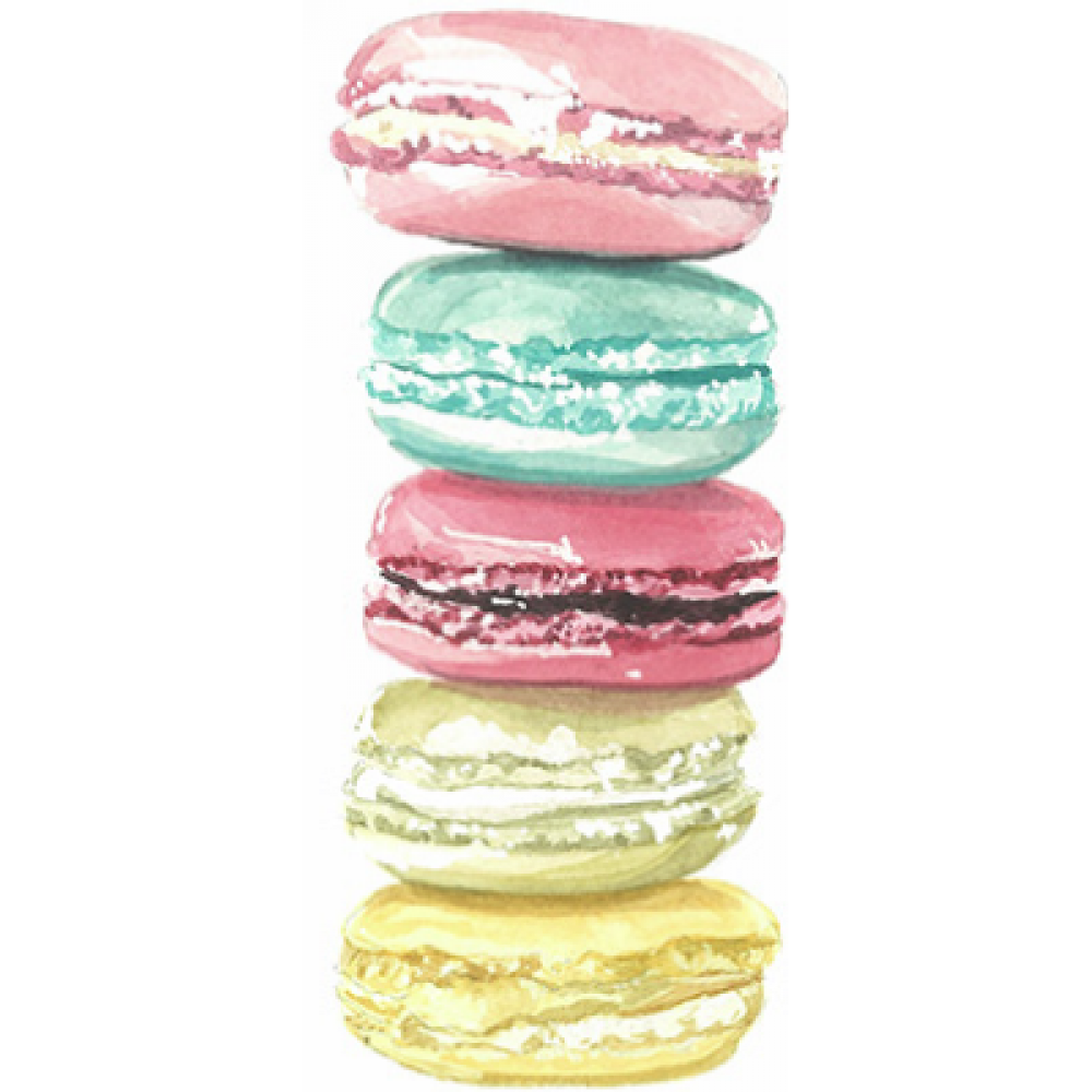 Any Occasion - Macarons
