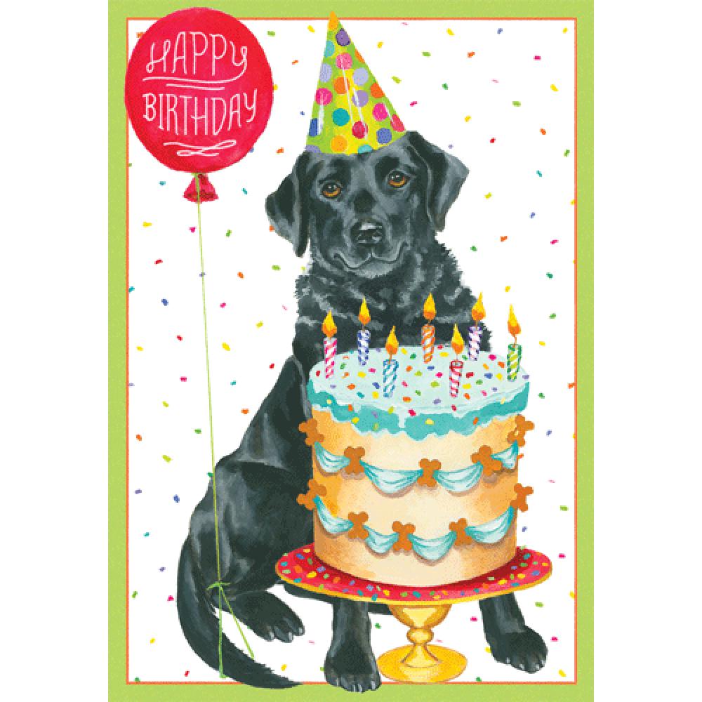 Birthday - Black Dog