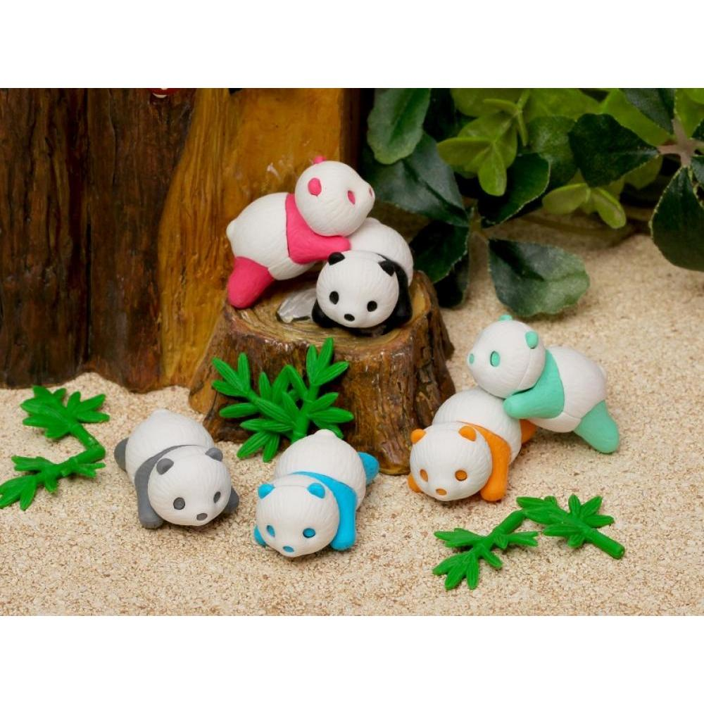 Eraser Panda Baby 6 Assorted Colors