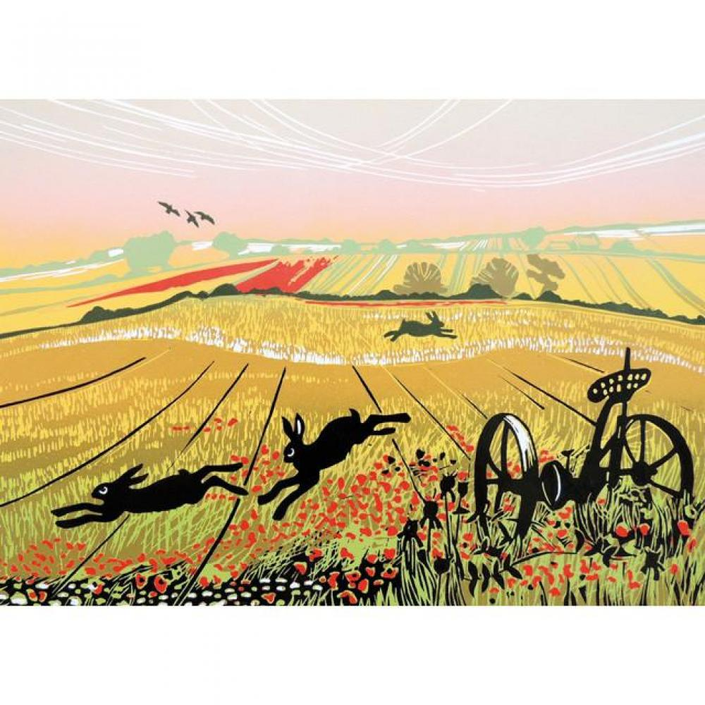 Any Occasion - Hares in a Poppy field