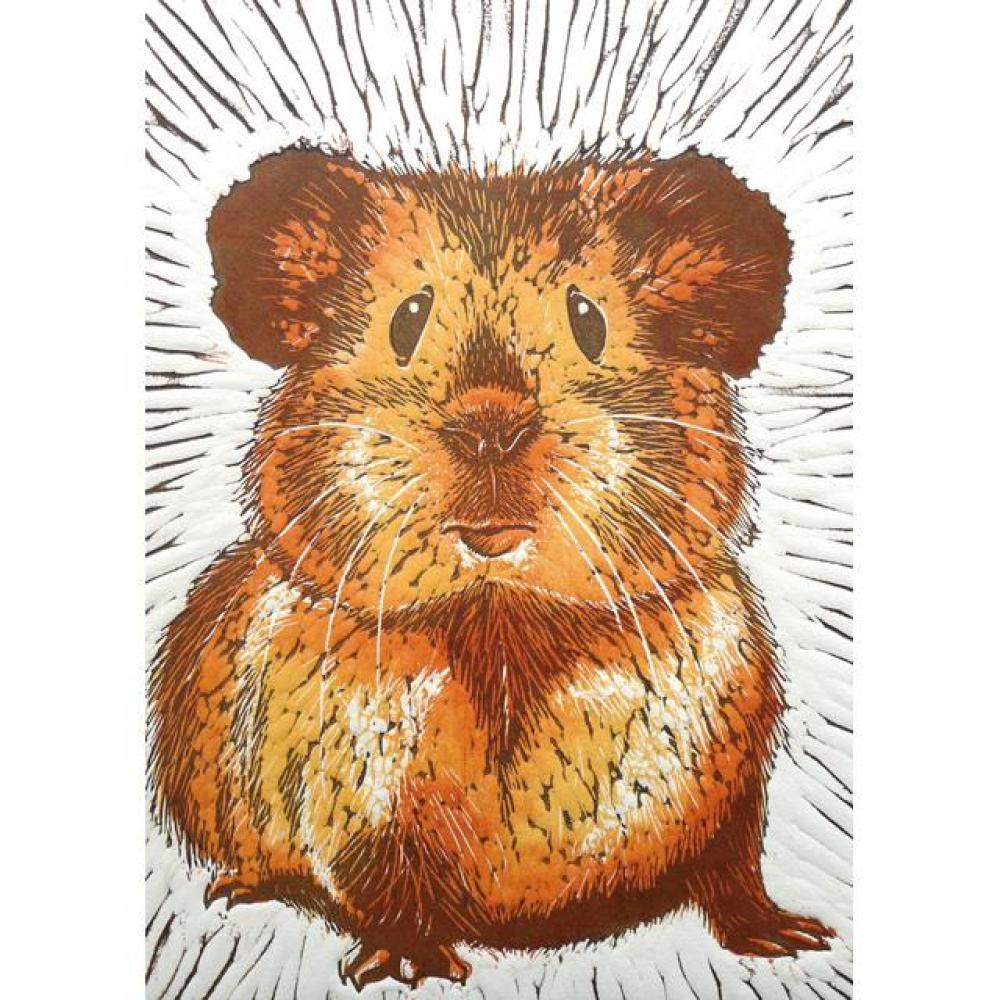 Any Occasion - Mary Collett - Guinea Pig