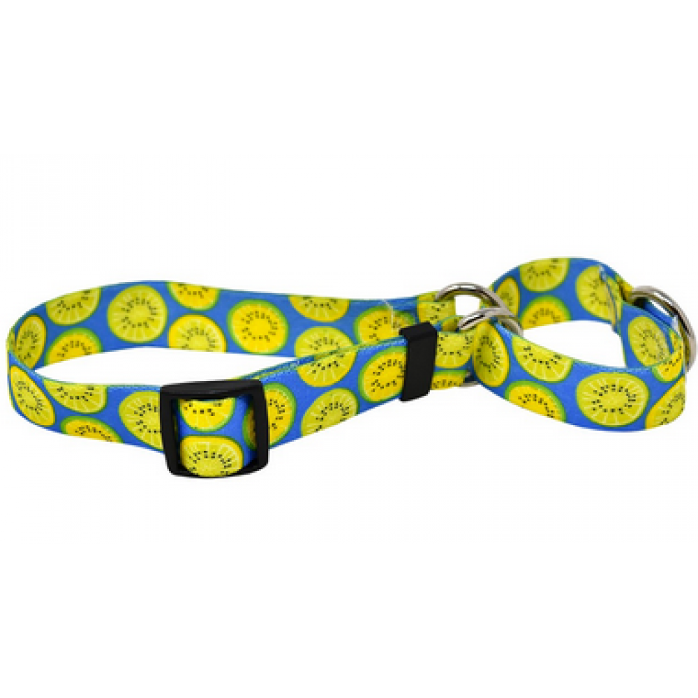 Dog Collar 1in Large Lemon and Lime