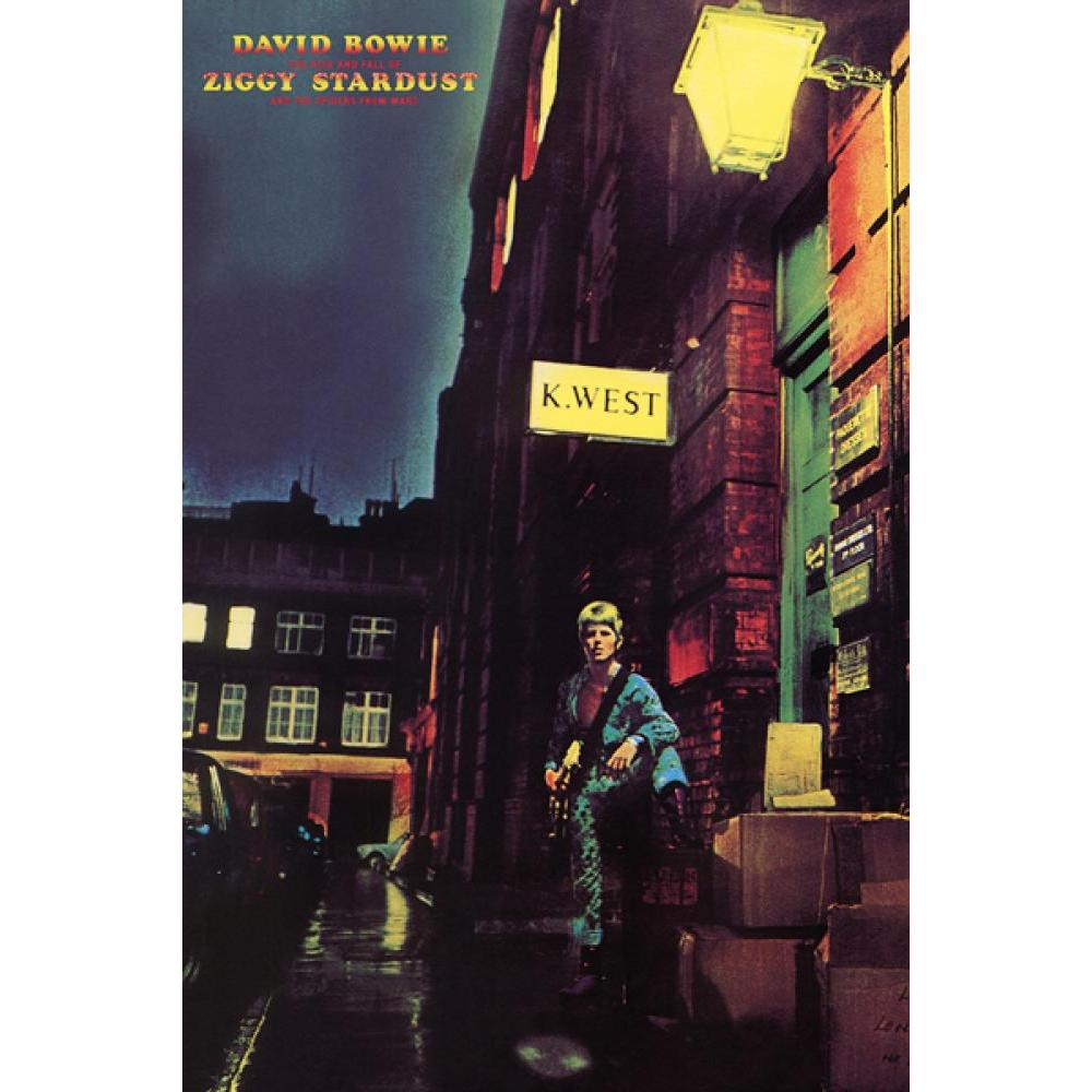 David Bowie Ziggy Stardust 24inx36in Poster