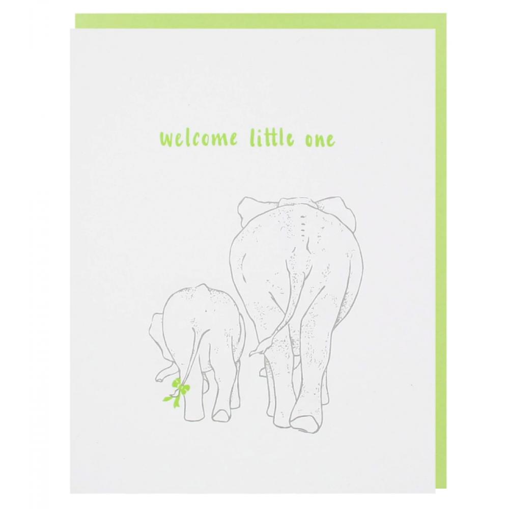 Baby - Baby Elephant