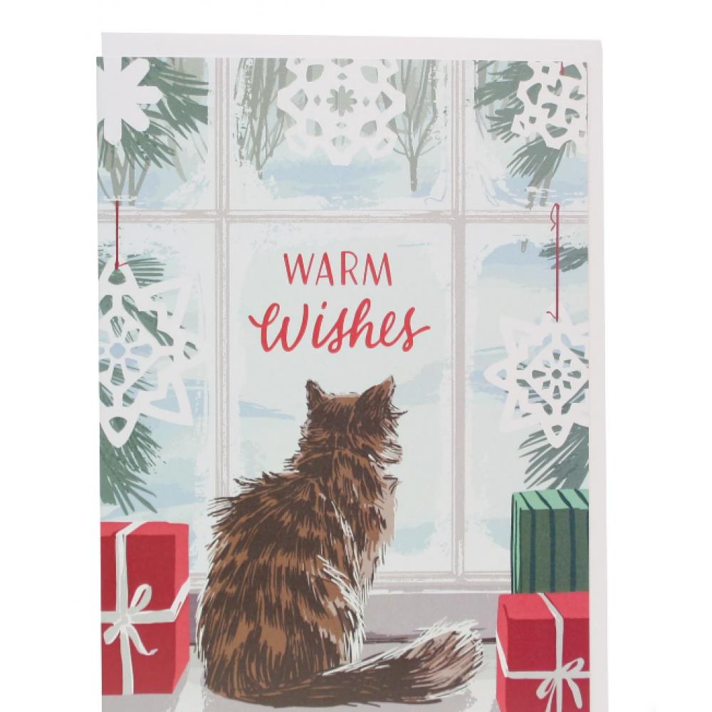 Holiday - Indoor Cat