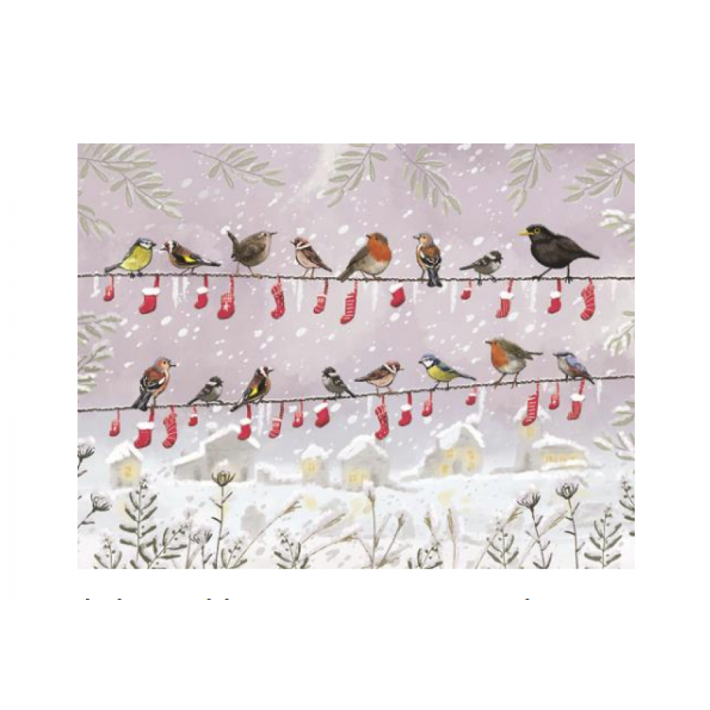 Boxed Card - Christmas - Bird Stockings In a Row