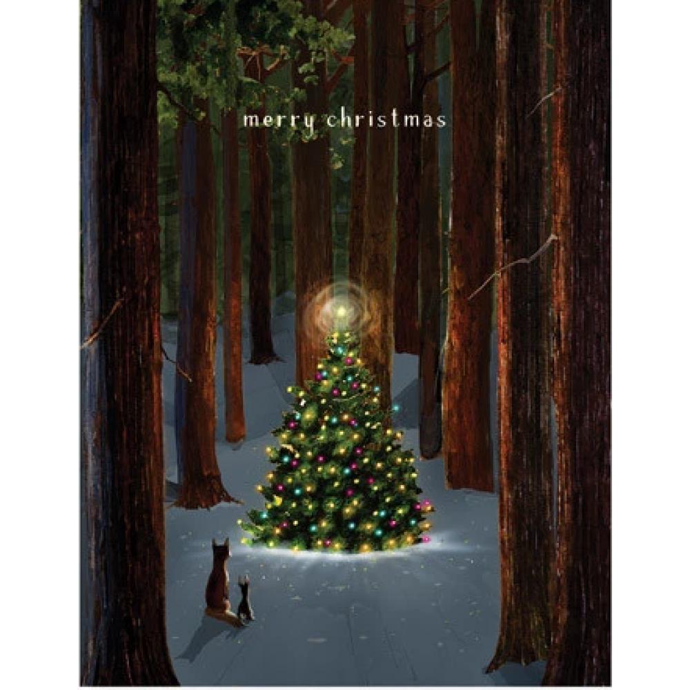 Boxed Card - Christmas - Tree Lighting