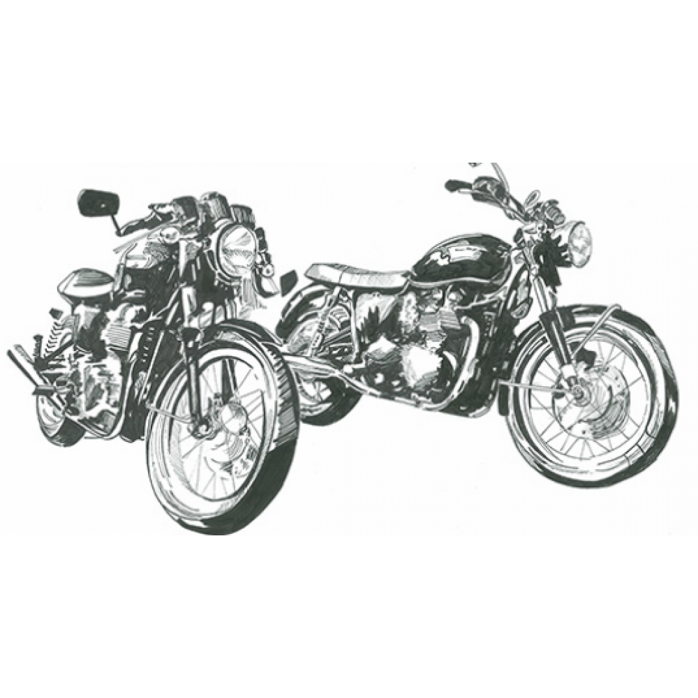 Any Occasion - Motorcycles