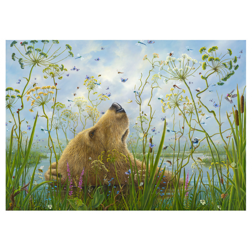 Birthday - Robert Bissell - The Whole World
