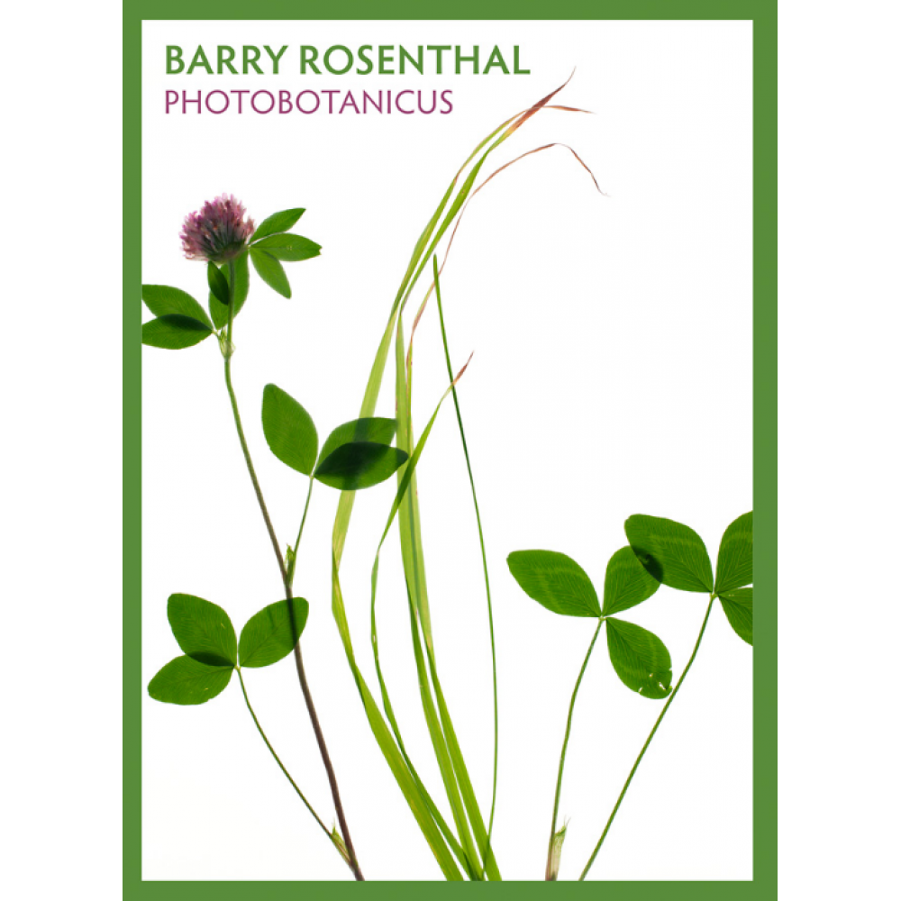 Boxed Cards - Barry Rosenthal Photobotanicus