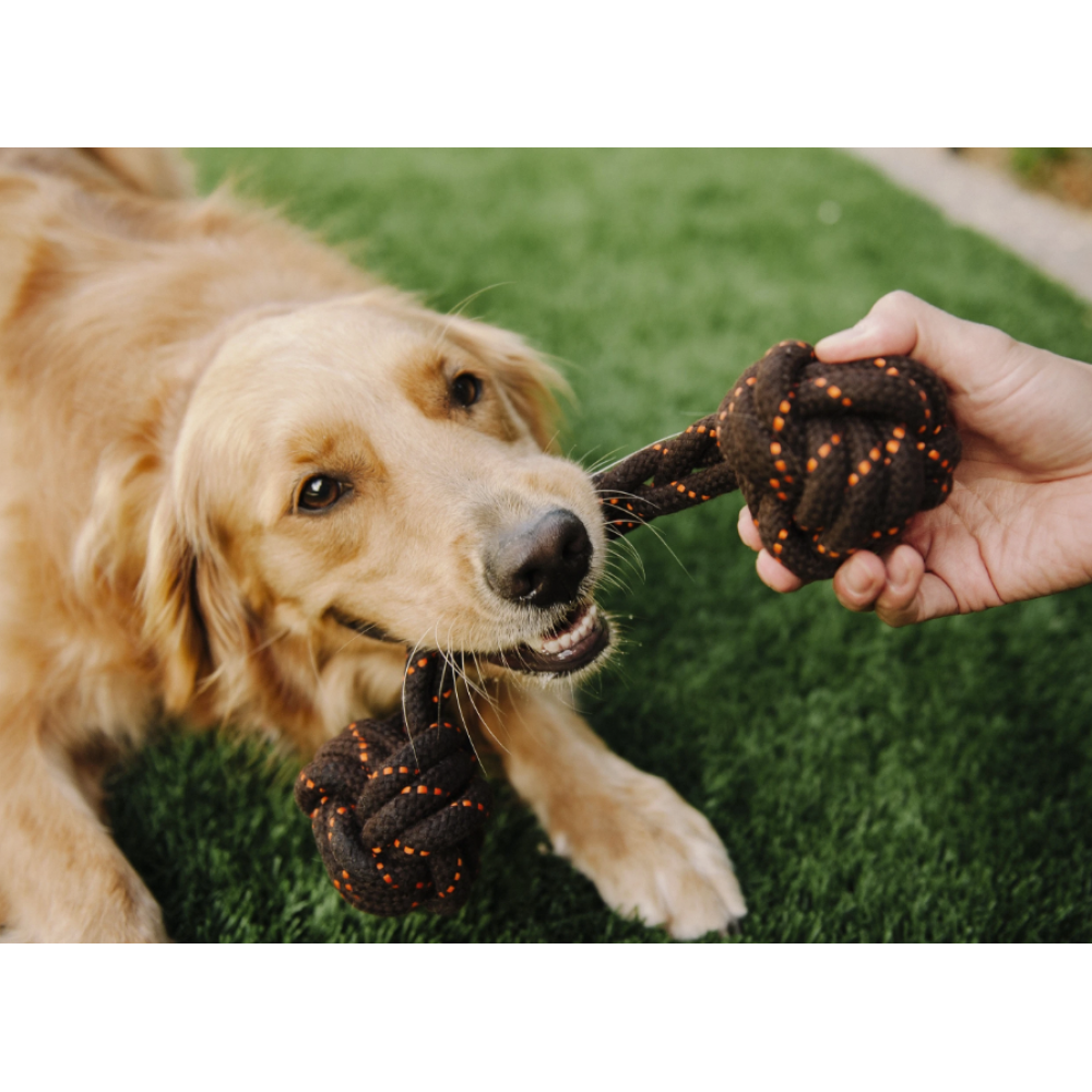 Dog Toy Scout and About Barbell Rope Small