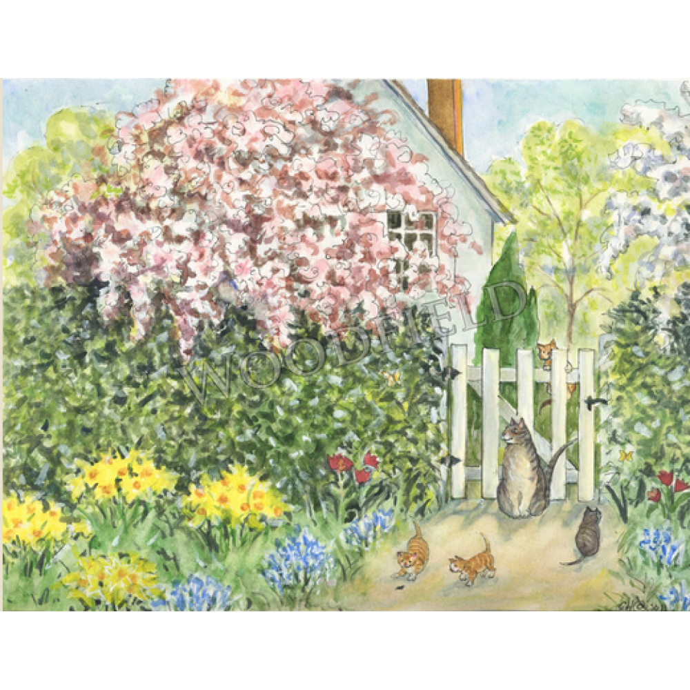 Any Occasion - Cottage Garden