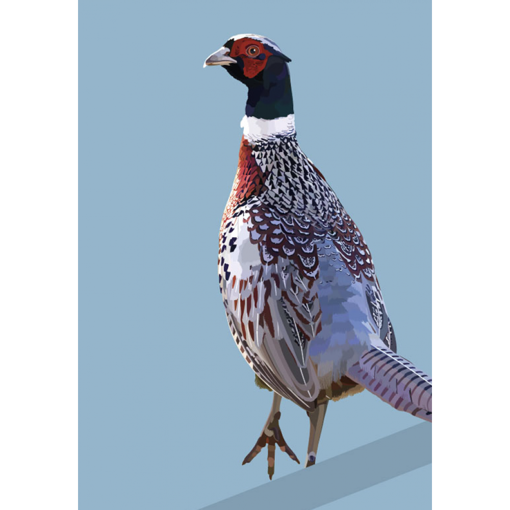 Any Occasion - Pheasant