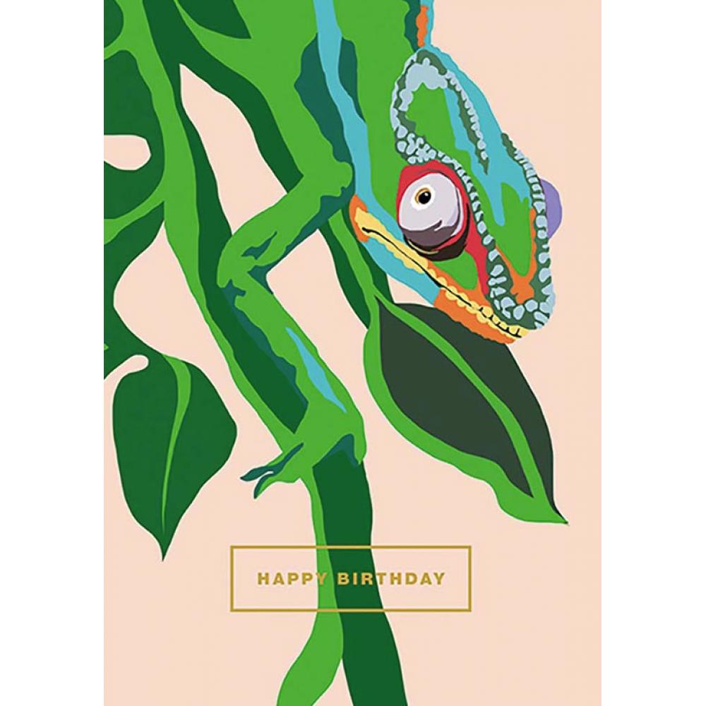 Birthday - Chameleon