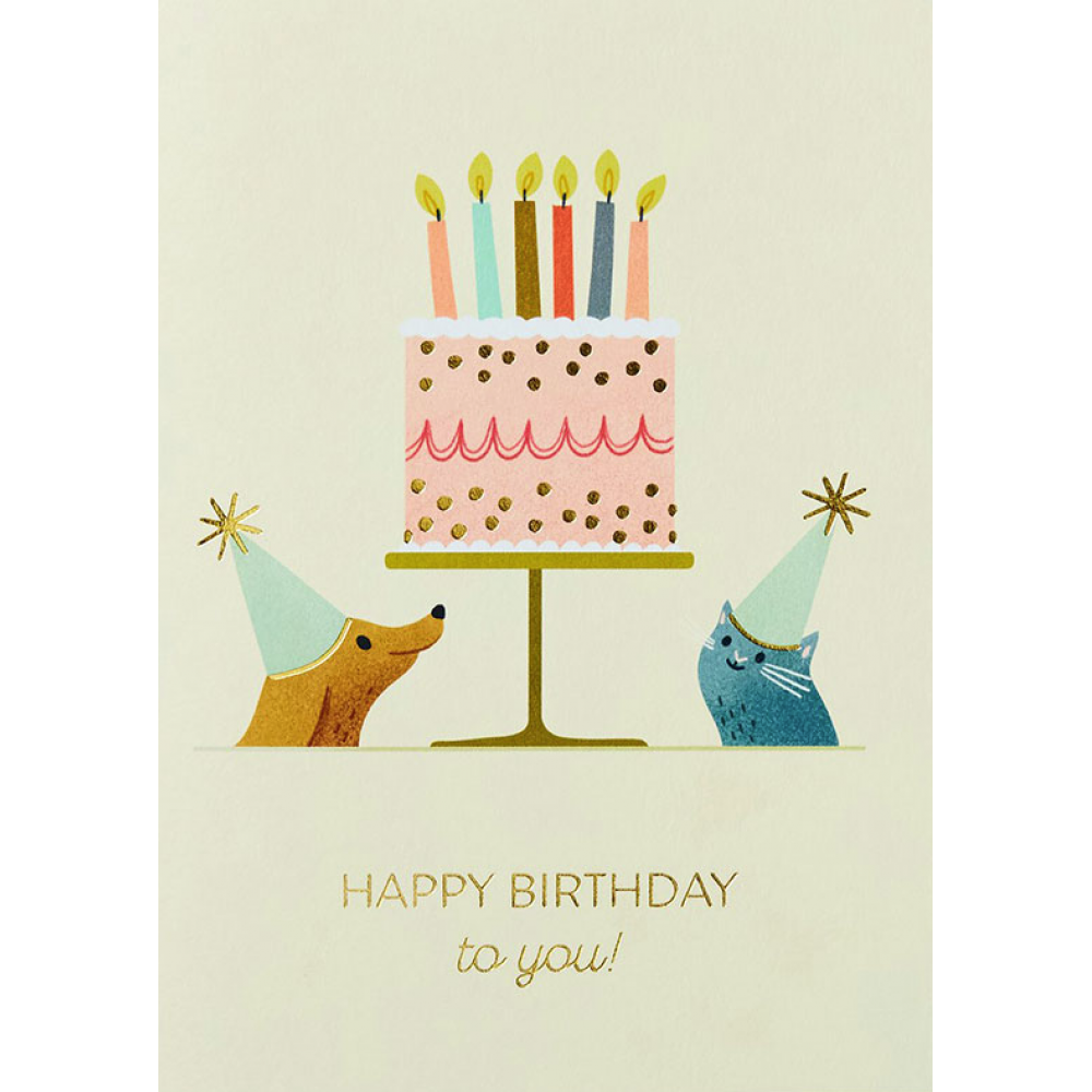 Birthday - Pets
