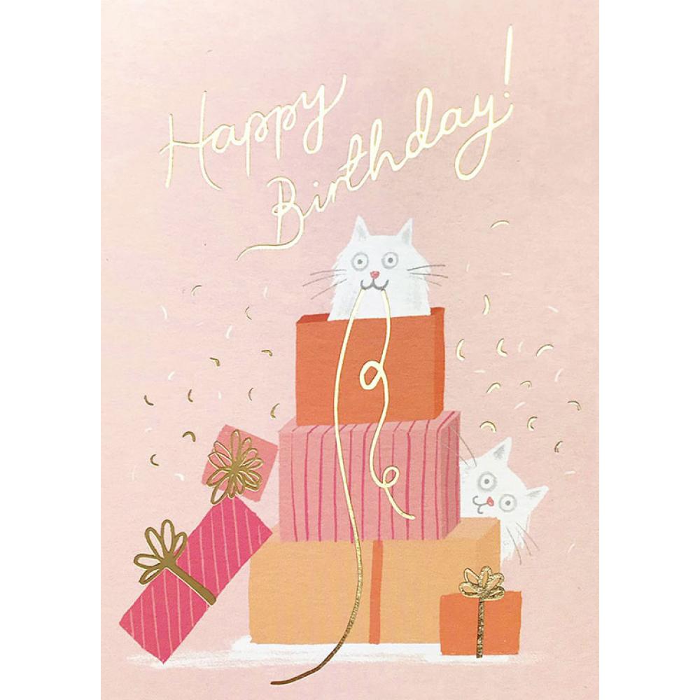 Birthday - Cat