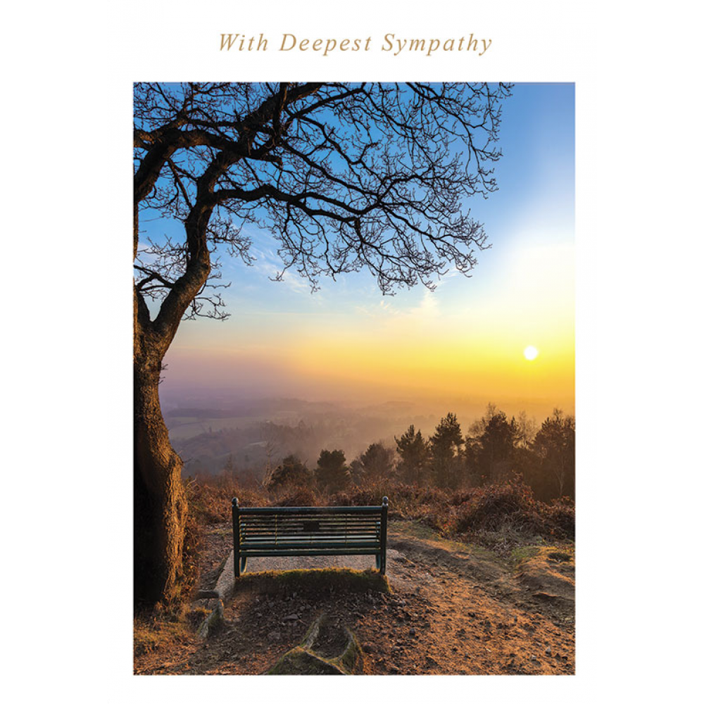 Sympathy - Bench Sunset