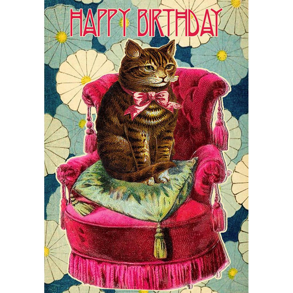 Birthday - Cat/Chair