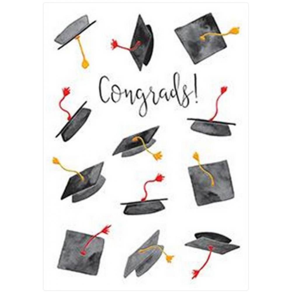 Graduation - Flying Hats