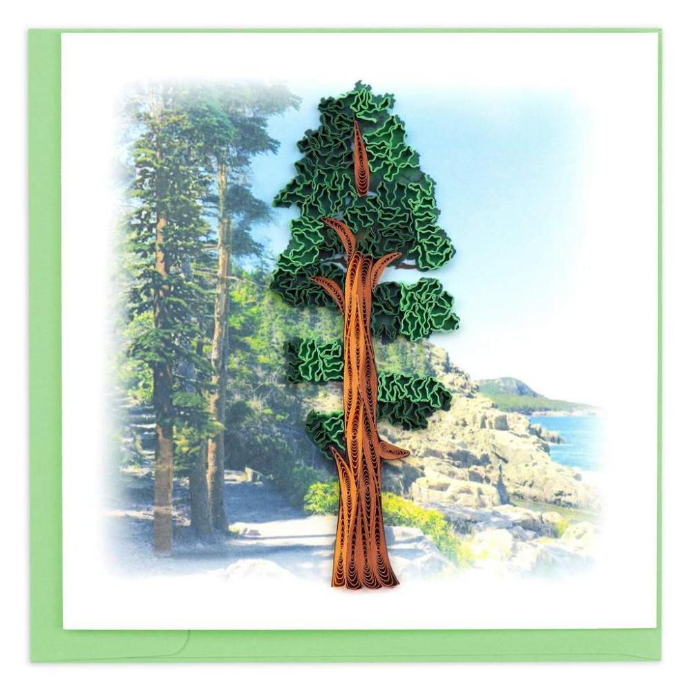 Any Occasion - Quilling Card - Redwood Tree