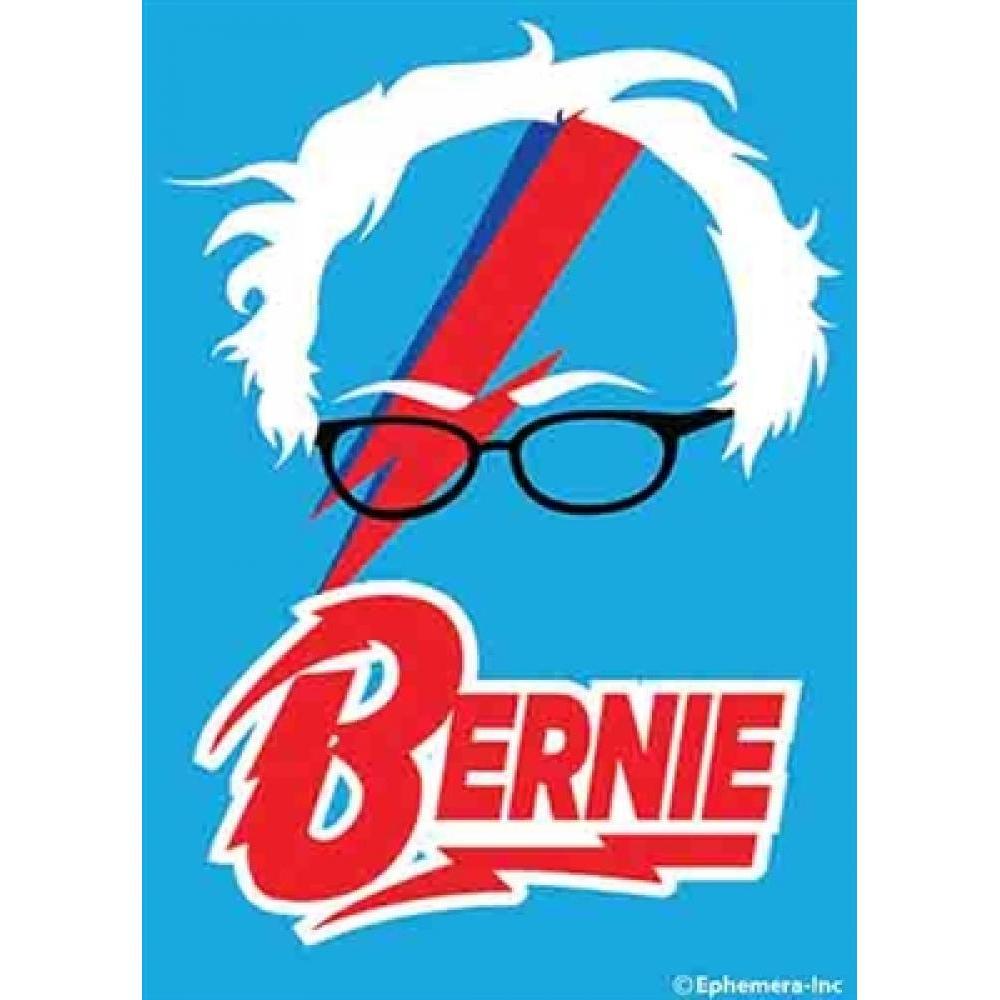 Magnet - Bernie
