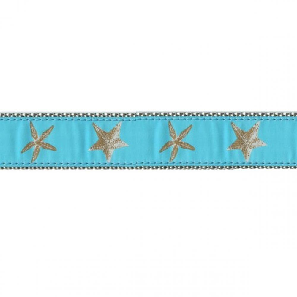 Dog Collar 11-18in  Aqua