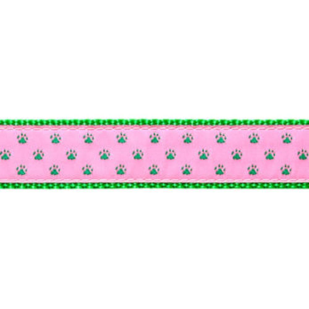 Dog Collar 12-20in Green Paw Print