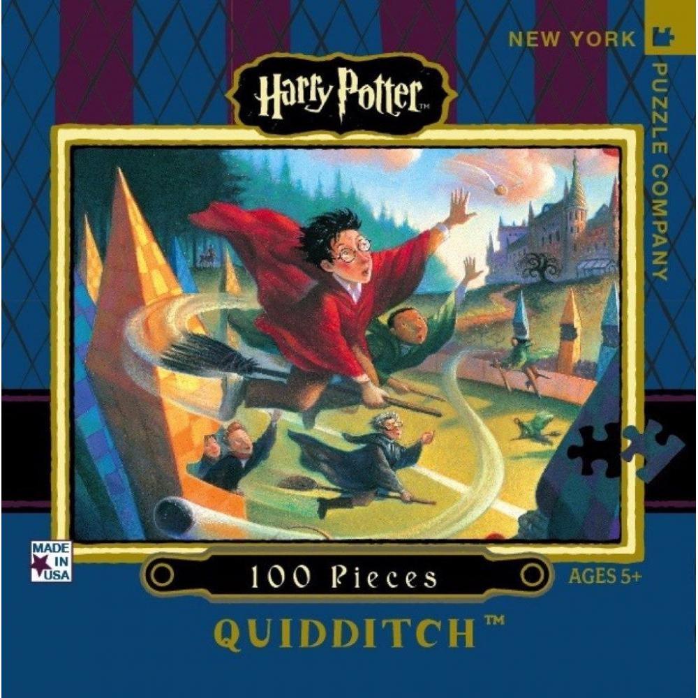 Harry Potter Mini Puzzle 100 Piece Quidditch