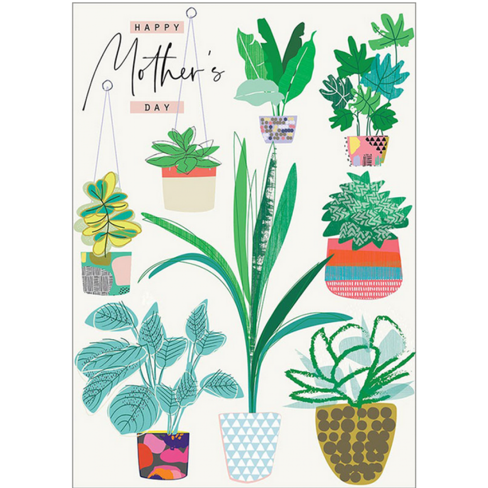 Mothers Day - Plants