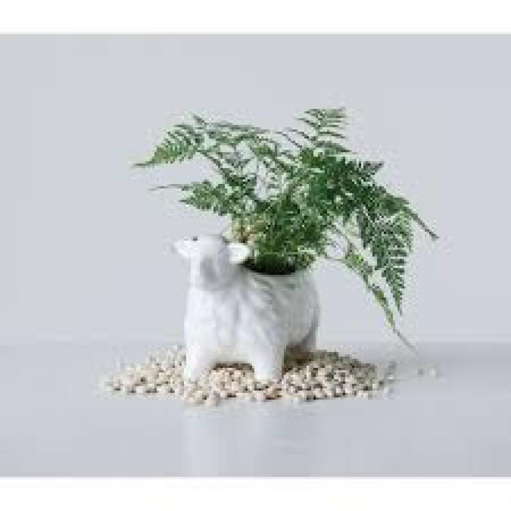 Planter - Terra-cotta Sheep, White