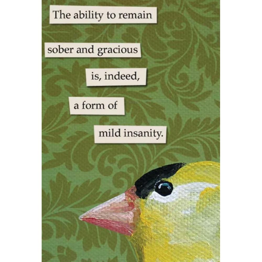 Magnet - Mild Insanity