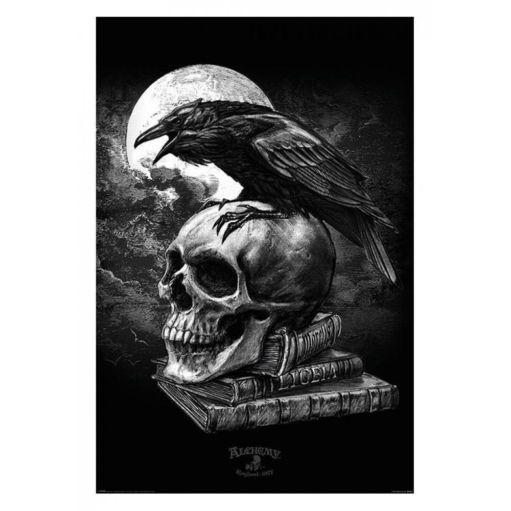 Poe\'s Raven 24inx36in Poster