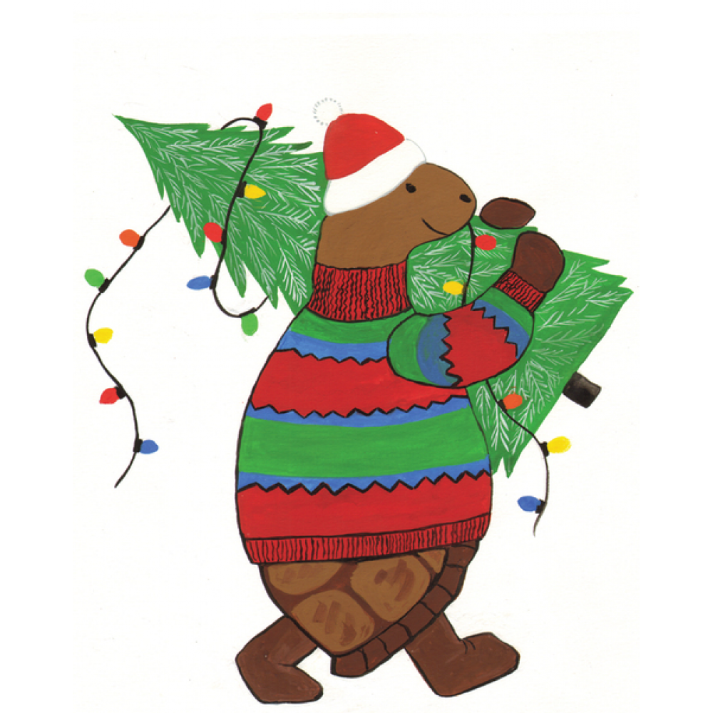 Enclosure Christmas - Turtle Tale