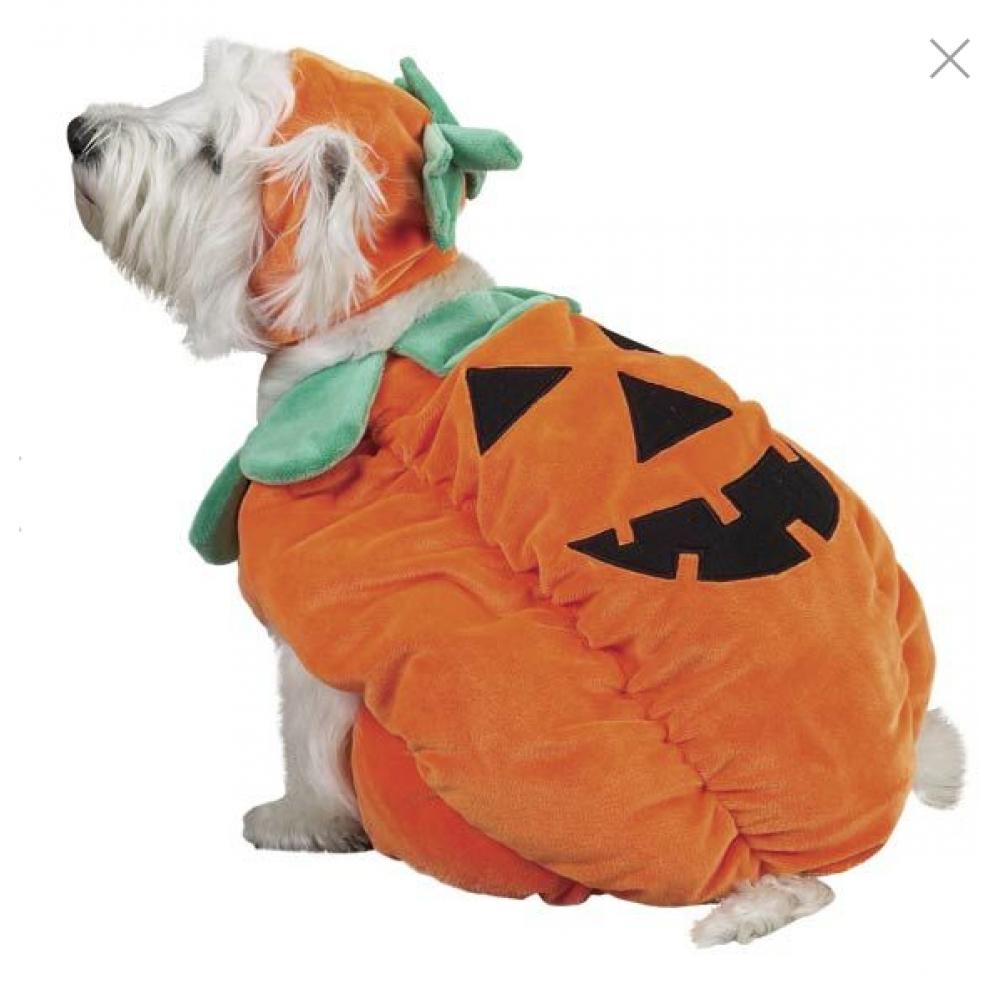 Pet Costume - Pumpkin Small