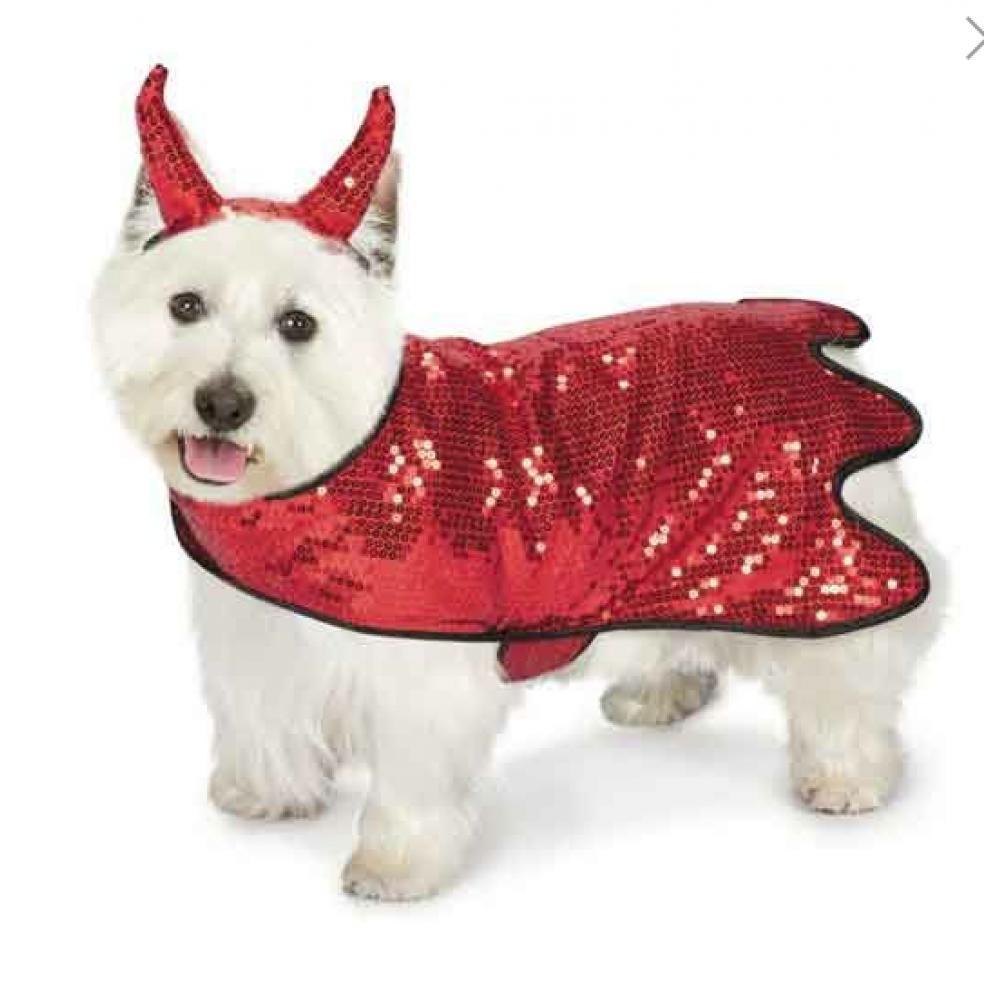 Pet Costume - Devil Small