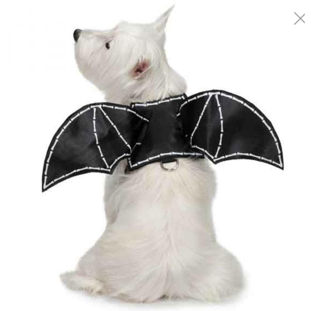 Pet Costume - Bat Wings Medium